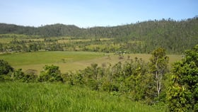 Rural / Farming commercial property for sale at Mena Creek QLD 4871