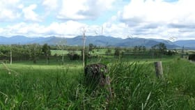 Rural / Farming commercial property sold at Tully QLD 4854