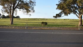 Development / Land commercial property for sale at 203 Mount Gambier Road Millicent SA 5280
