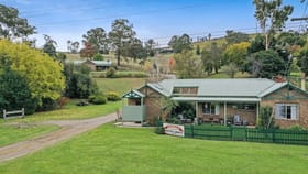 Hotel, Motel, Pub & Leisure commercial property for sale at 5620 Buchan - Orbost Road Buchan VIC 3885
