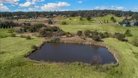 Rural / Farming commercial property for lease at 381 Pitt Town Road Pitt Town NSW 2756
