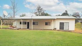 Rural / Farming commercial property for lease at 1311 Collombatti Road Collombatti NSW 2440