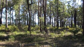 Rural / Farming commercial property for sale at Lot 11 Russell Road Balingup WA 6253