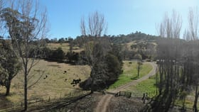 Rural / Farming commercial property for sale at 66 Homestead Road Glencoe NSW 2365