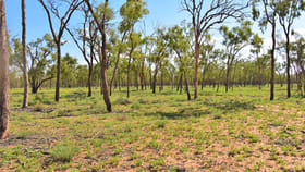 Rural / Farming commercial property sold at Barcaldine QLD 4725
