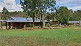 Rural / Farming commercial property for sale at 31906 Burnett Highway Monto QLD 4630