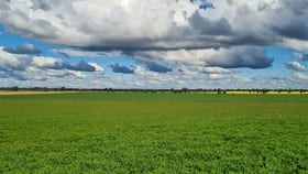 Rural / Farming commercial property sold at Matong NSW 2652