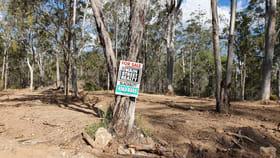 Rural / Farming commercial property for sale at 167 Old Esk Road Blackbutt QLD 4314