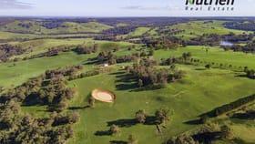 Rural / Farming commercial property for sale at ' Winniwood Farm' Winnejup WA 6255