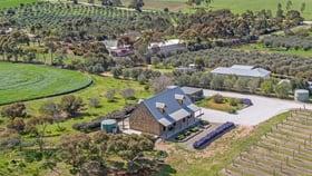 Rural / Farming commercial property for sale at 5397 BALAKLAVA ROAD Auburn SA 5451