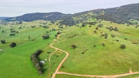 Rural / Farming commercial property for sale at 358 Soldier Settlers Road Tallangatta Valley VIC 3701