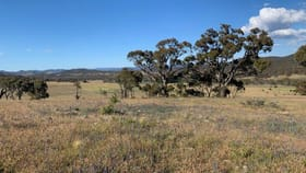 Rural / Farming commercial property for sale at 399 Rothlyn Road Cooma NSW 2630
