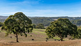 Rural / Farming commercial property for sale at 290 Gemmell Road Macclesfield SA 5153