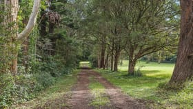 Rural / Farming commercial property for sale at 3/360 Western Avenue Montville QLD 4560
