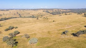 Rural / Farming commercial property for sale at 347 Sheridan Park Road Boorowa NSW 2586