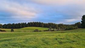 Rural / Farming commercial property for sale at 1418 Upper Natone Road Upper Natone TAS 7321