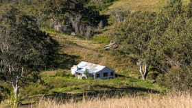 Rural / Farming commercial property for sale at Caffreys Flat NSW 2424