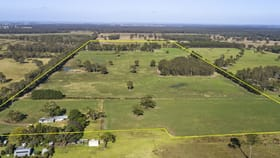 Rural / Farming commercial property for sale at 260 Andersons Lane Bairnsdale VIC 3875