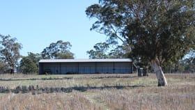 Rural / Farming commercial property for sale at Lot 673 Walkington Hills Road Frances SA 5262