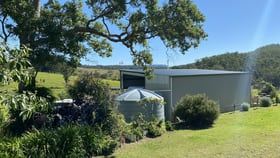 Rural / Farming commercial property for sale at 445 Pigman Road Dyraaba NSW 2470