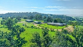 Rural / Farming commercial property for sale at 568 Coopers Gully Road Bega NSW 2550