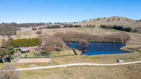 Rural / Farming commercial property for sale at 207 Urandangie Road Guyra NSW 2365