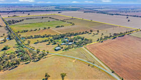 Rural / Farming commercial property for sale at 140 Spellisey Road Avonmore VIC 3559