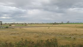 Rural / Farming commercial property for sale at Lot 1 Turners Road Perry Bridge VIC 3862