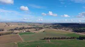 Rural / Farming commercial property for sale at Cowra NSW 2794