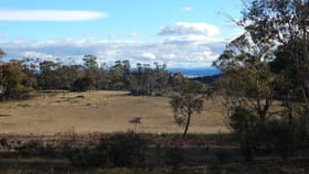 Rural / Farming commercial property for sale at Lot 106 & 116 Collins Road Numeralla NSW 2630