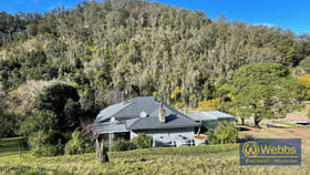 Rural / Farming commercial property for sale at 664 Scone Road Gloucester NSW 2422