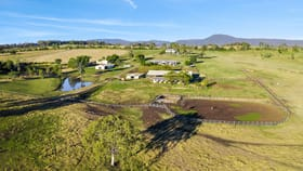 Rural / Farming commercial property for sale at 646 Kerry Road Kerry QLD 4285