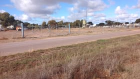 Development / Land commercial property for lease at Section 427 Wake Road Cleve SA 5640