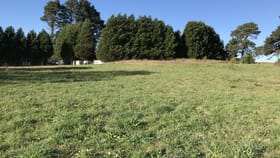 Rural / Farming commercial property for lease at 3/9 McCourt Road Moss Vale NSW 2577