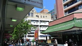 Hotel, Motel, Pub & Leisure commercial property for lease at Shop 117/25-29 Dixon Street Haymarket NSW 2000