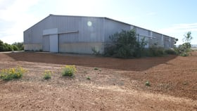 Showrooms / Bulky Goods commercial property for lease at 112 Kemp Street Narngulu WA 6532