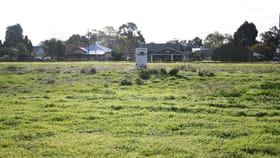 Development / Land commercial property for sale at 90 Stewart Terrace Naracoorte SA 5271