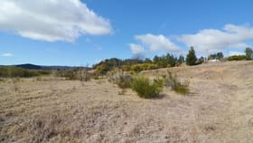 Development / Land commercial property for sale at 1/Lot 7 Pinta Street Wallerawang NSW 2845