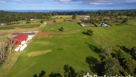 Development / Land commercial property for sale at 379 Long Road Tamborine Mountain QLD 4272