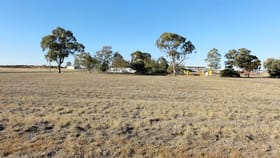 Development / Land commercial property for sale at Lot 9 Drew Street Dalby QLD 4405