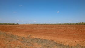 Rural / Farming commercial property for sale at 3400 Fleming Road Douglas-daly NT 0822