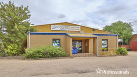 Other commercial property for sale at 3 King Avenue Mildura VIC 3500