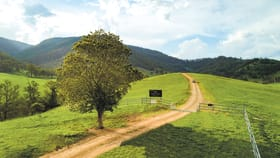 Rural / Farming commercial property for sale at 'Strike A Light' — Large Scale Coastal Country Cells River NSW 2424