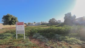 Development / Land commercial property for sale at 47 Neeld Street Wyalong NSW 2671