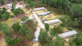 Rural / Farming commercial property for sale at 3525 Mary Valley Road Imbil QLD 4570
