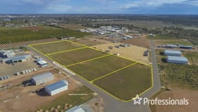 Development / Land commercial property for sale at 14-22 Modica Crescent Buronga NSW 2739