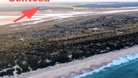 Development / Land commercial property for sale at 1384 Carrs Creek Longford VIC 3851