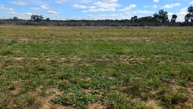Development / Land commercial property for sale at Lot/40 Defence Drive Mulwala NSW 2647