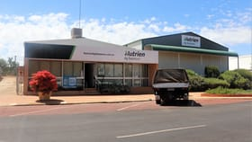 Showrooms / Bulky Goods commercial property for sale at 49 Fenton Place Wongan Hills WA 6603