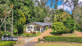 Hotel, Motel, Pub & Leisure commercial property for sale at 9 Eagle Heights Road Tamborine Mountain QLD 4272